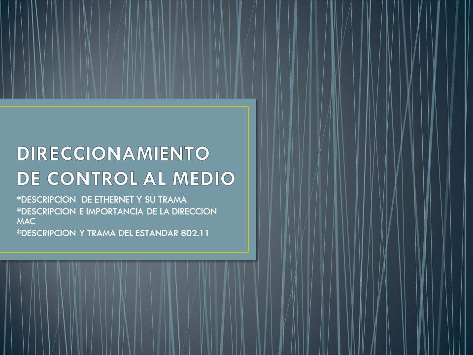 DIRECCIONAMIENTO DE CONTROL AL MEDIO