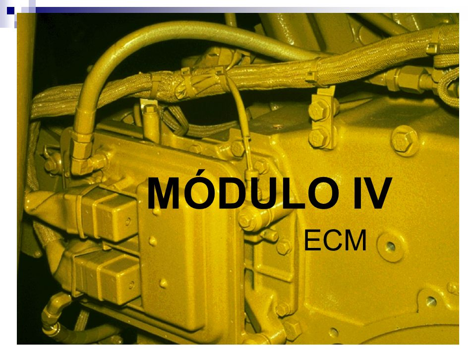 MÓDULO IV ECM