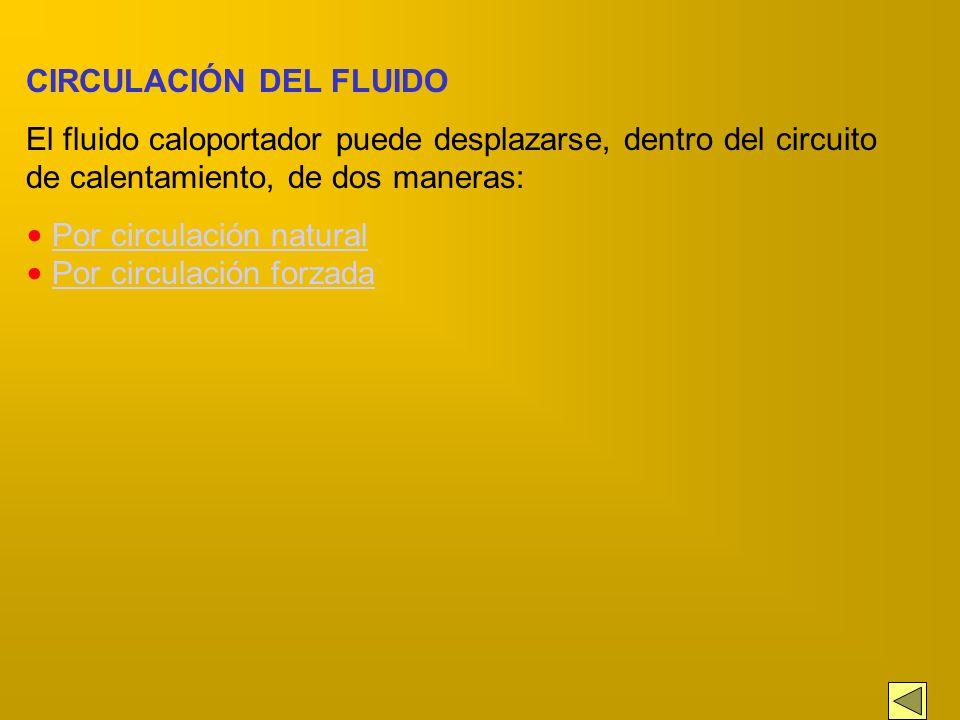 CIRCULACIÓN DEL FLUIDO