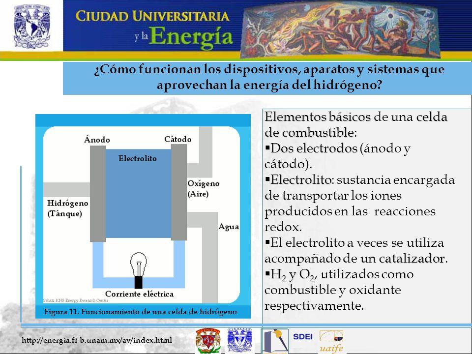 Elementos básicos de una celda de combustible: