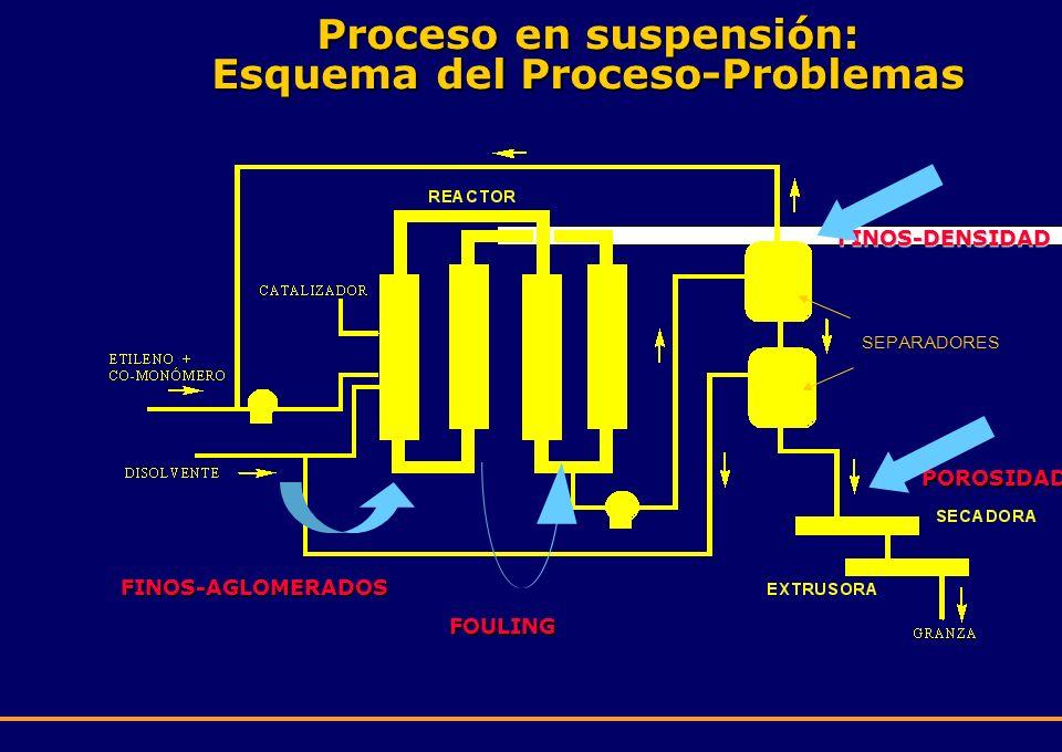 Proceso en suspensión: Esquema del Proceso-Problemas