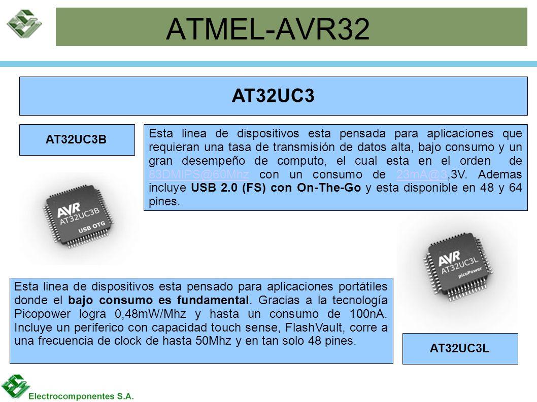 ATMEL-AVR32 AT32UC3. AT32UC3B.