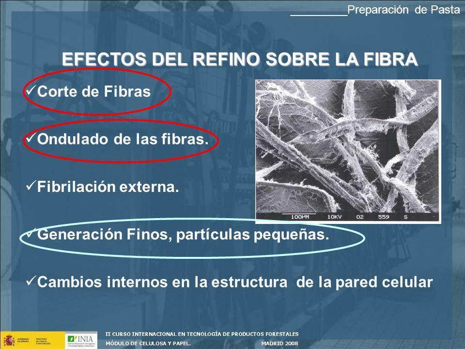 EFECTOS DEL REFINO SOBRE LA FIBRA