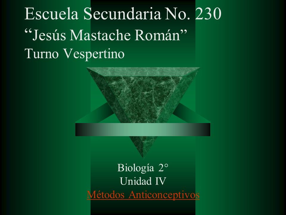 Escuela Secundaria No. 230 Jesús Mastache Román Turno Vespertino