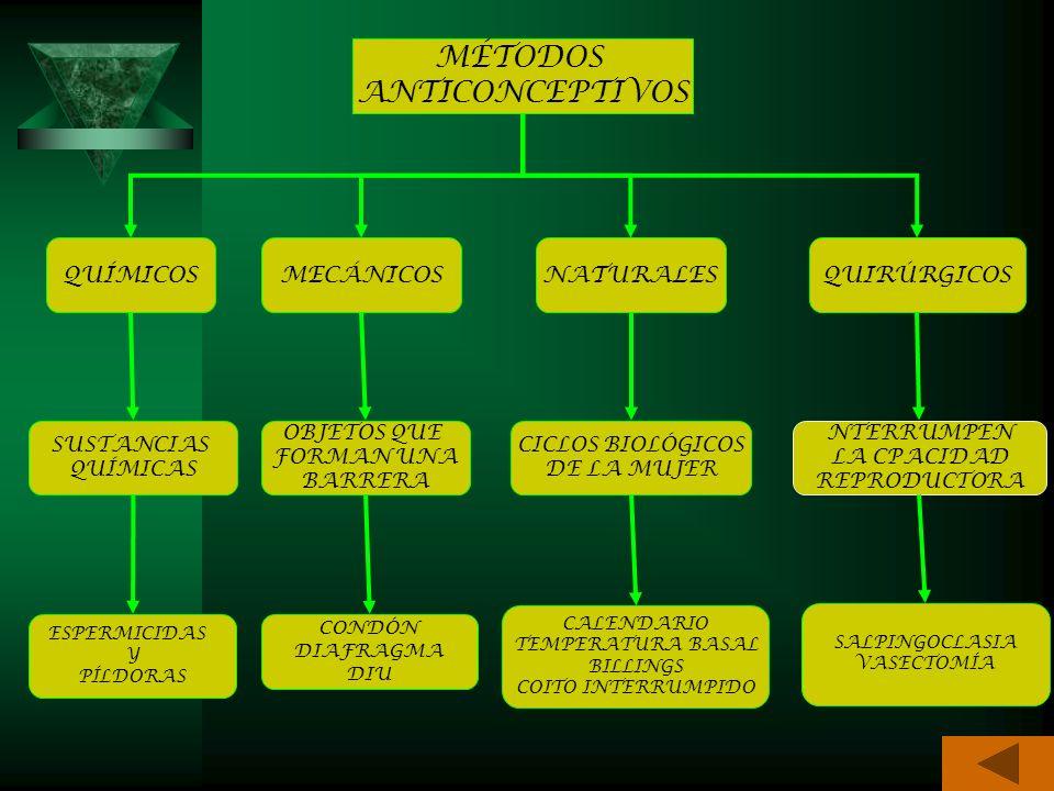 MÉTODOS ANTICONCEPTIVOS QUÍMICOS MECÁNICOS NATURALES QUIRÚRGICOS