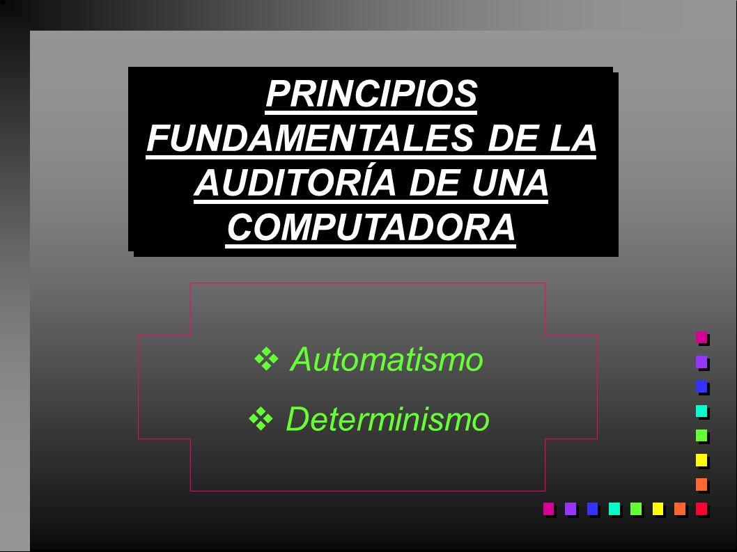 PRINCIPIOS FUNDAMENTALES DE LA AUDITORÍA DE UNA COMPUTADORA