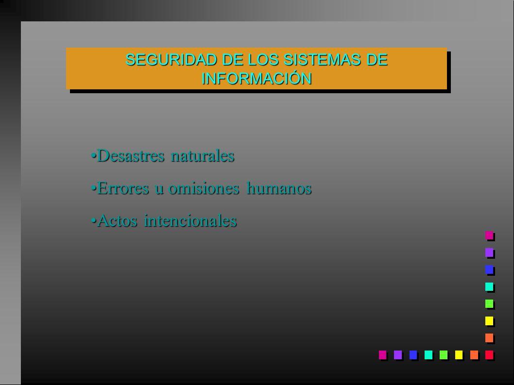 SEGURIDAD DE LOS SISTEMAS DE INFORMACIÓN