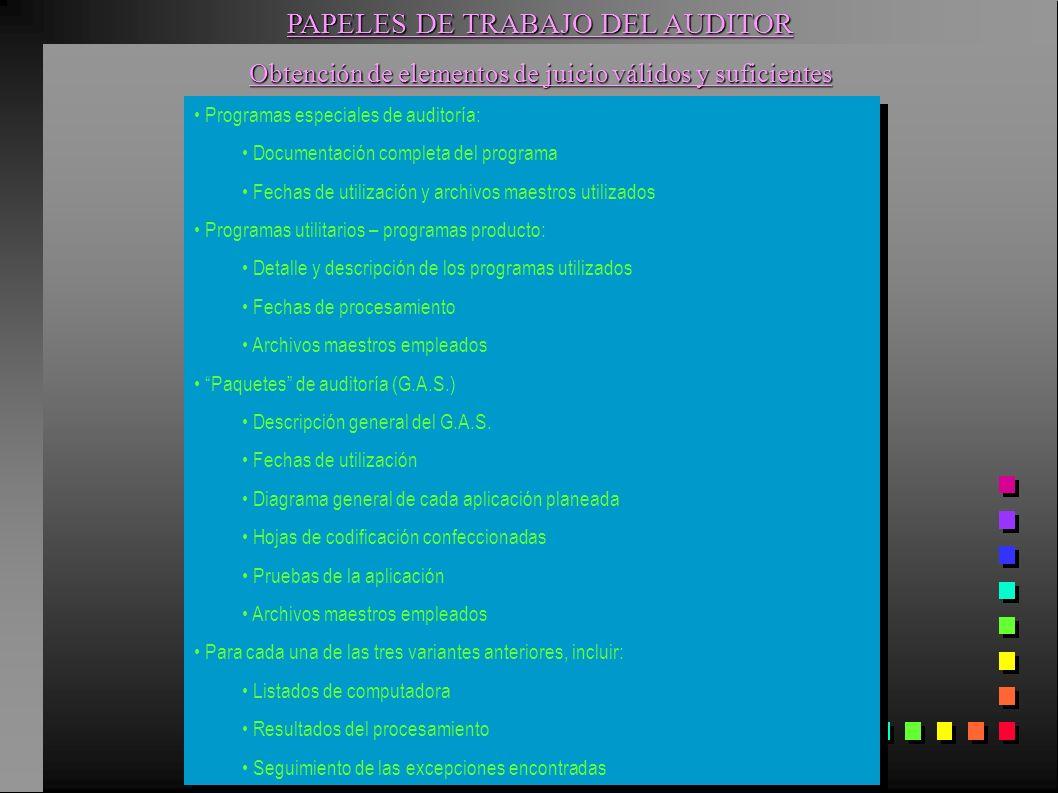 PAPELES DE TRABAJO DEL AUDITOR