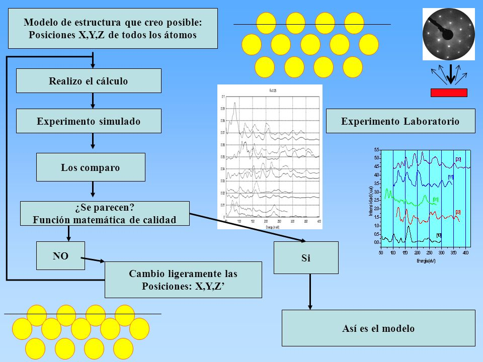 Modelo de estructura que creo posible: