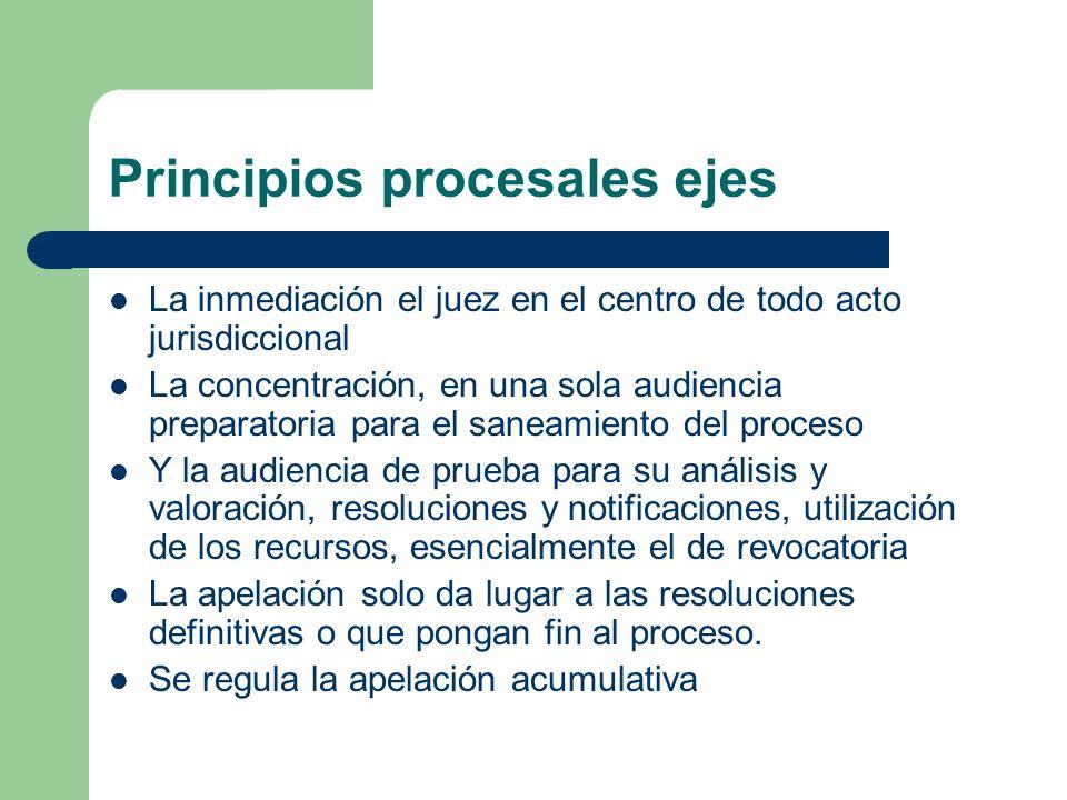 Principios procesales ejes