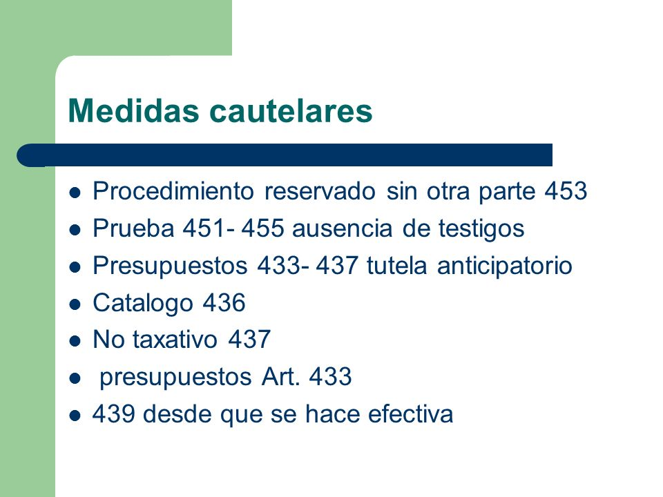 Medidas cautelares Procedimiento reservado sin otra parte 453
