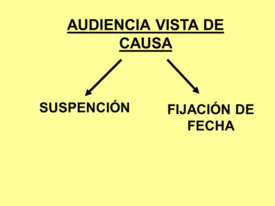 AUDIENCIA VISTA DE CAUSA
