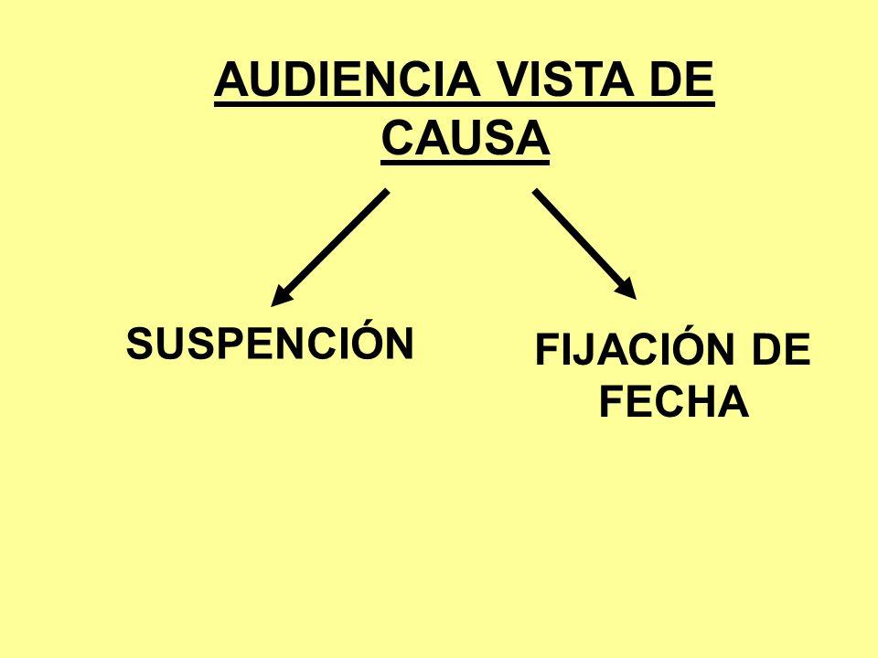 AUDIENCIA VISTA DE CAUSA