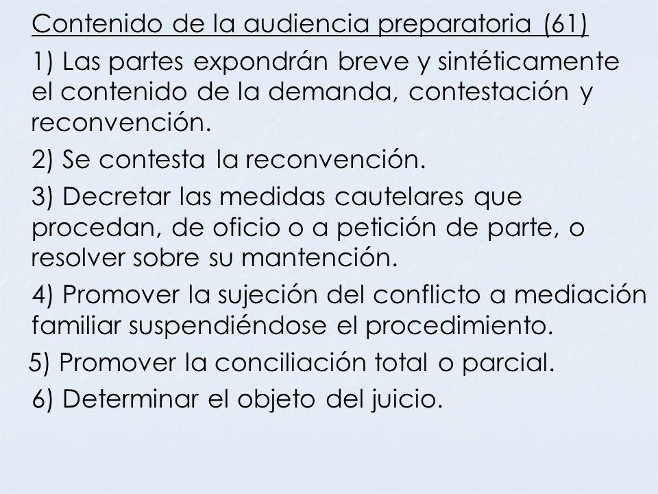 Contenido de la audiencia preparatoria (61)