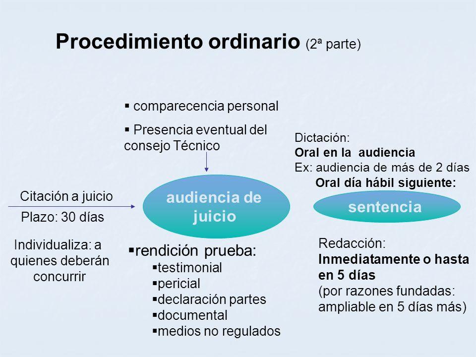 Procedimiento ordinario (2ª parte)