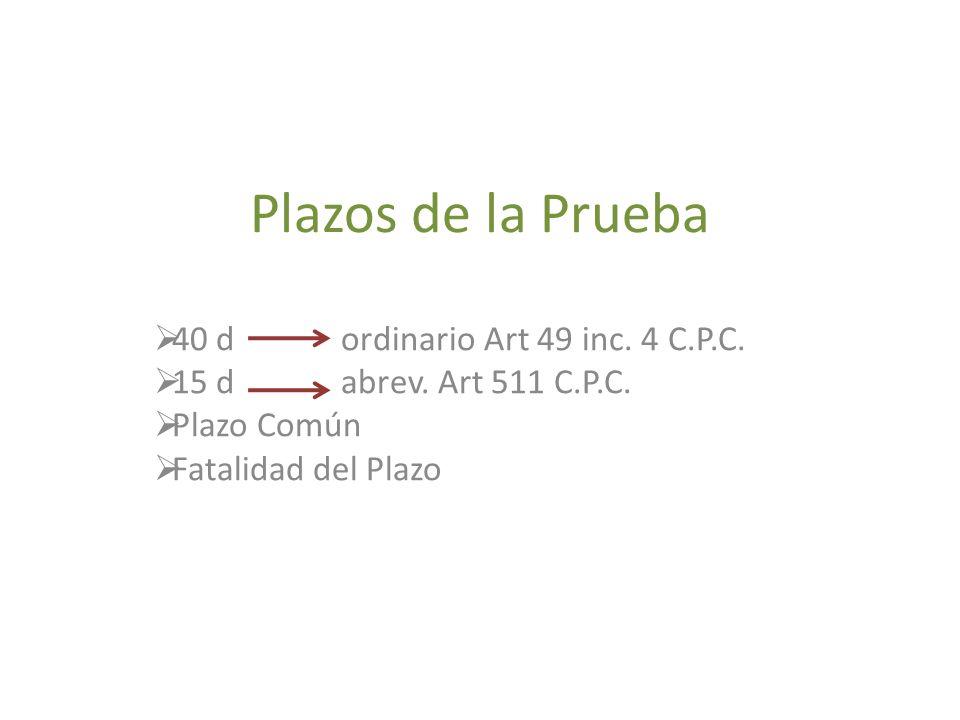 Plazos de la Prueba 40 d ordinario Art 49 inc. 4 C.P.C.