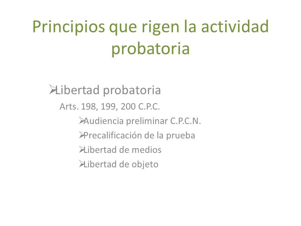 Principios que rigen la actividad probatoria