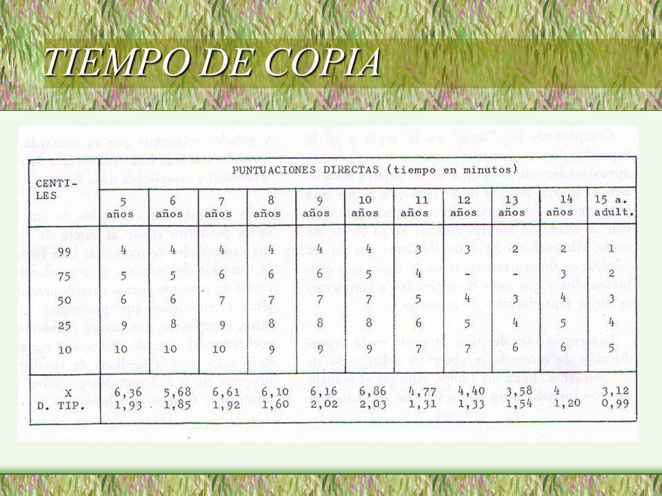 TIEMPO DE COPIA