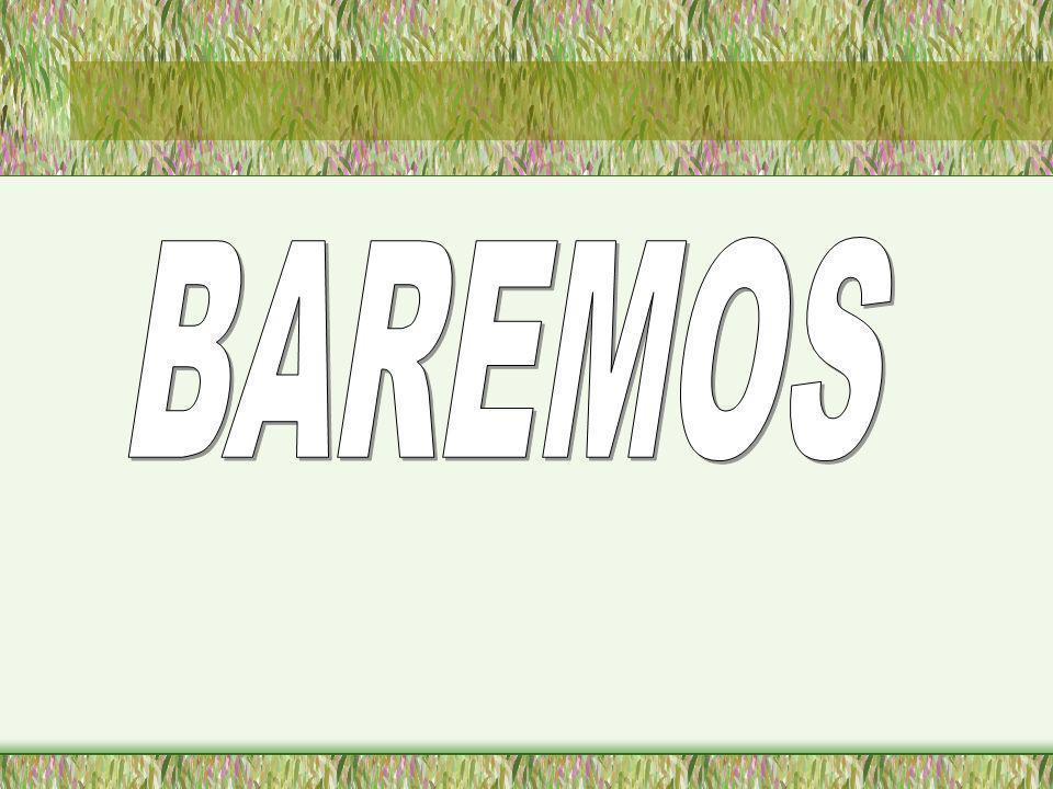 BAREMOS
