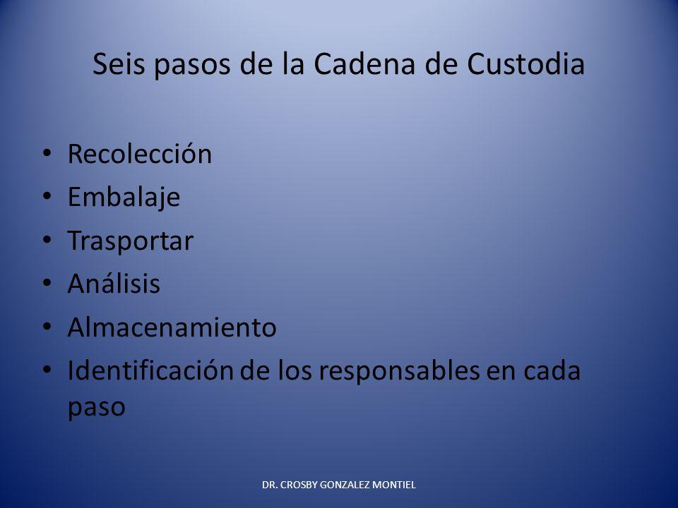 Seis pasos de la Cadena de Custodia