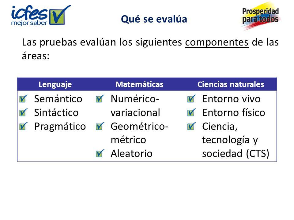 Las pruebas evalúan los siguientes componentes de las áreas: Semántico