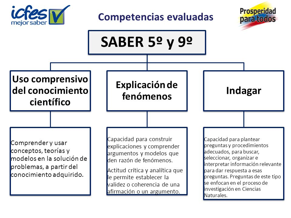 Competencias evaluadas