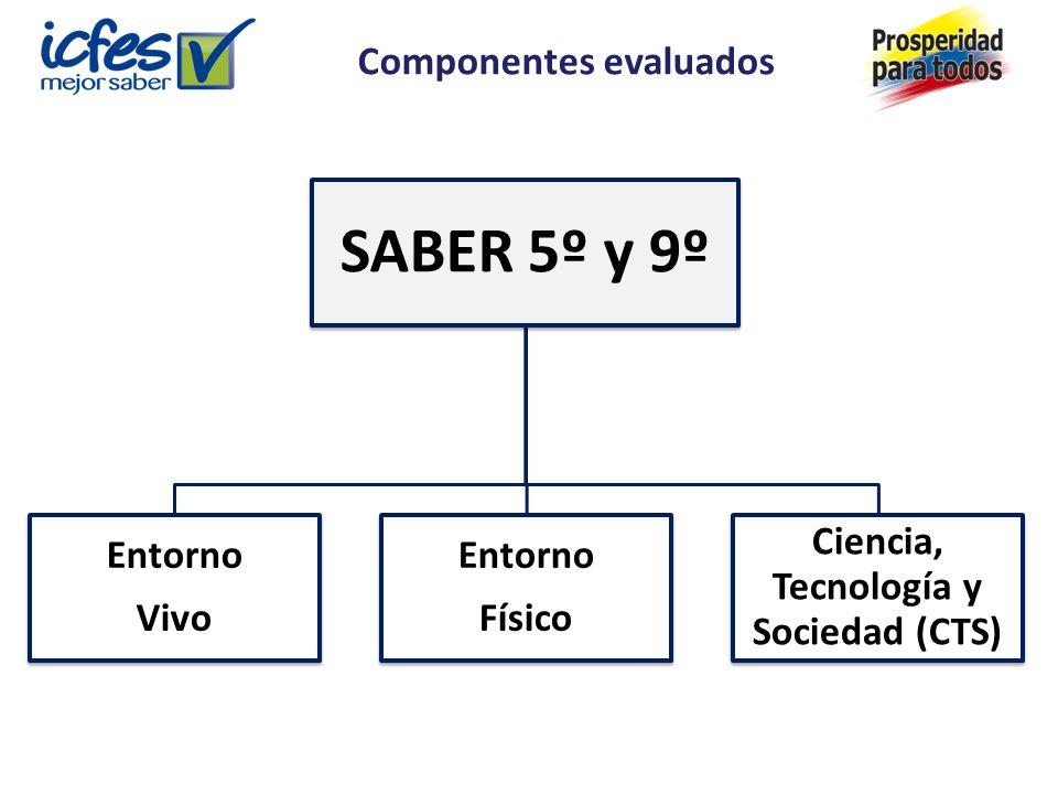 Componentes evaluados