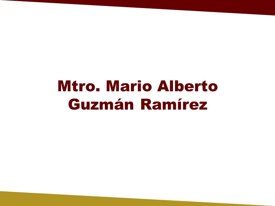 Mtro. Mario Alberto Guzmán Ramírez