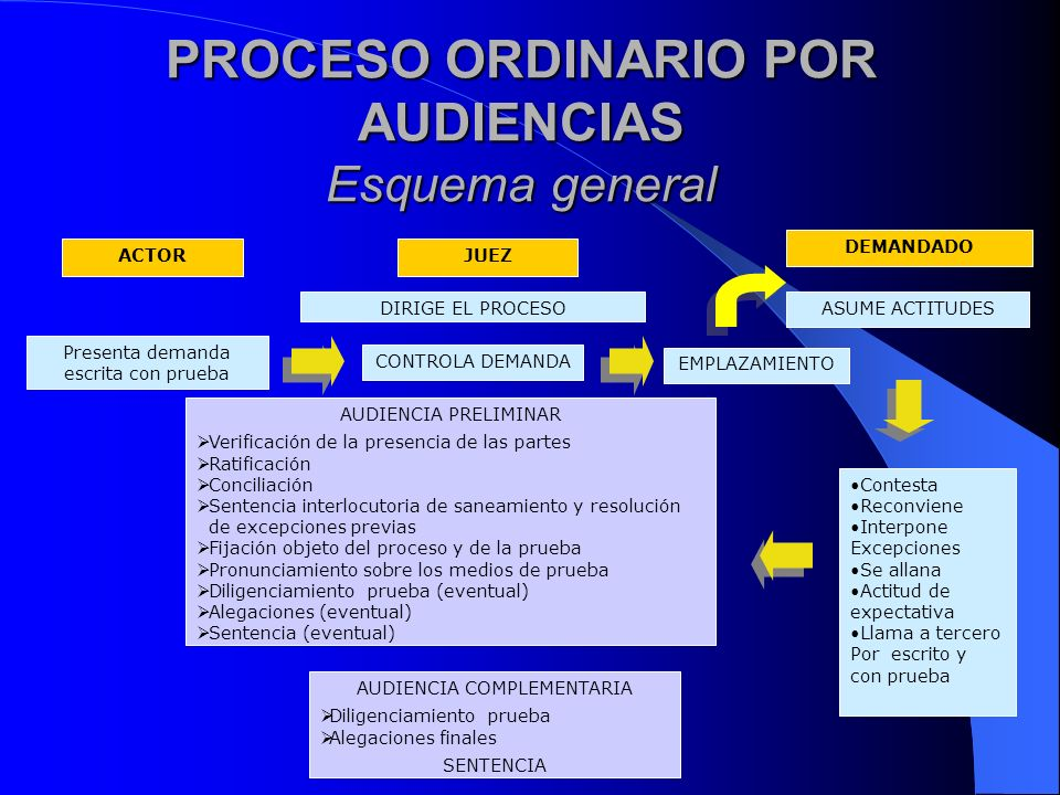 PROCESO ORDINARIO POR AUDIENCIAS Esquema general