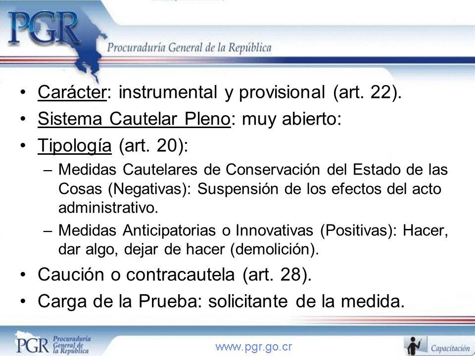 Carácter: instrumental y provisional (art. 22).