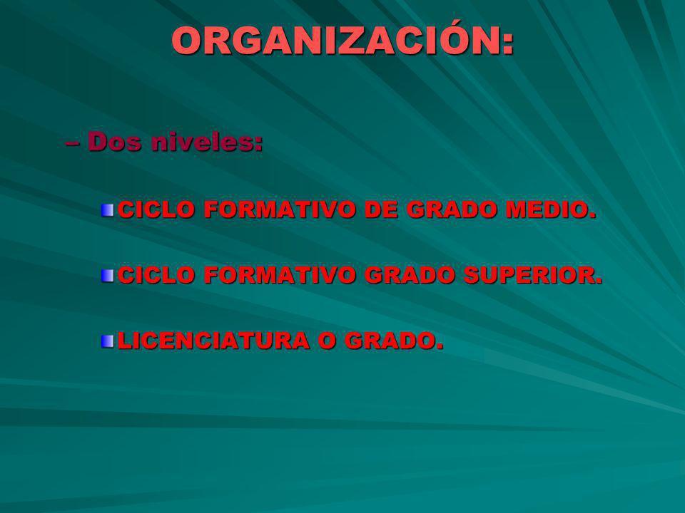 ORGANIZACIÓN: Dos niveles: CICLO FORMATIVO DE GRADO MEDIO.