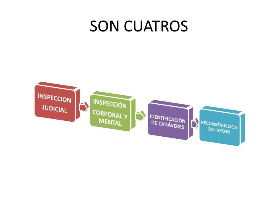 IDENTIFICACIÓN DE CADÁVERES RECONSTRUCCION DEL HECHO