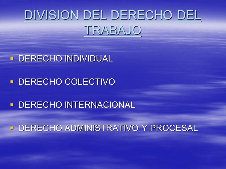 DIVISION DEL DERECHO DEL TRABAJO