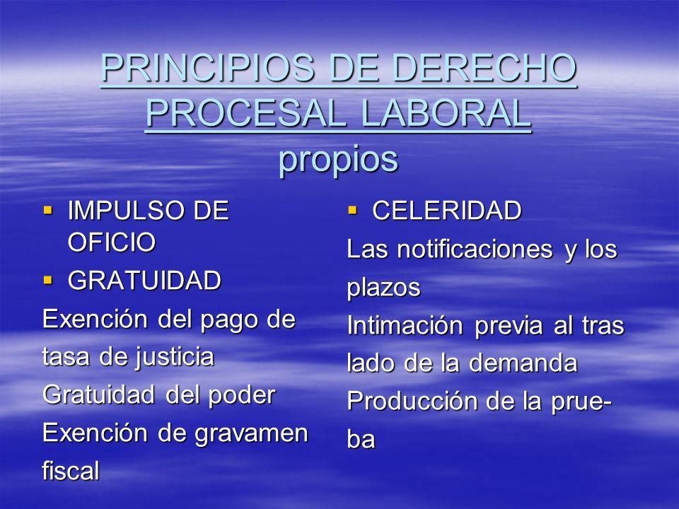 PRINCIPIOS DE DERECHO PROCESAL LABORAL propios