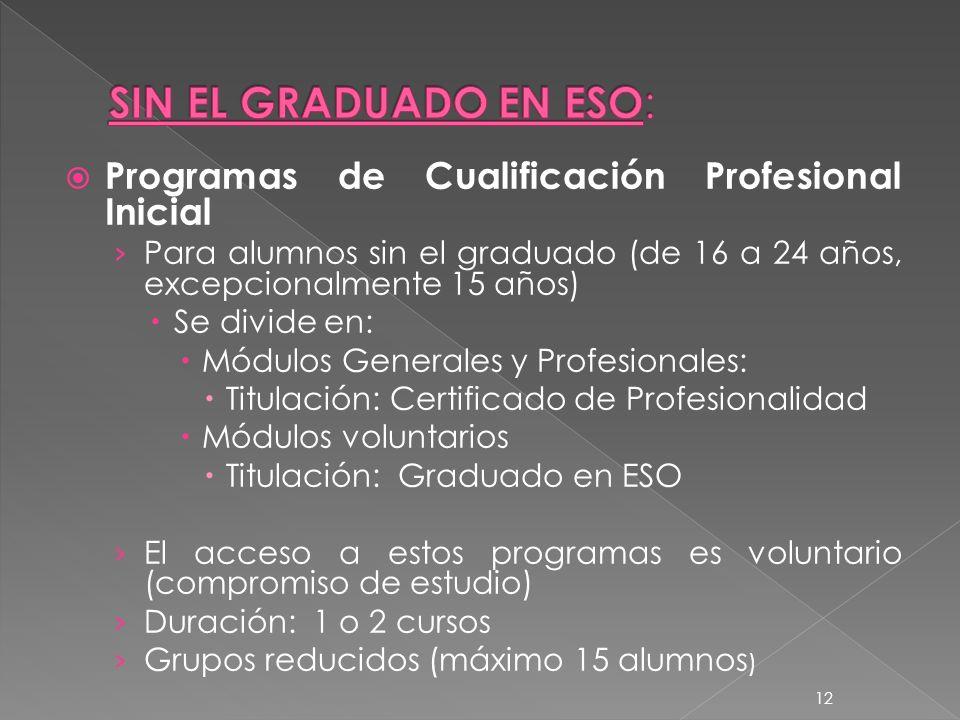 SIN EL GRADUADO EN ESO: Programas de Cualificación Profesional Inicial