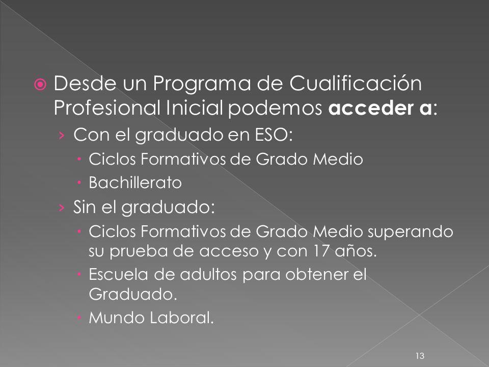Desde un Programa de Cualificación Profesional Inicial podemos acceder a: