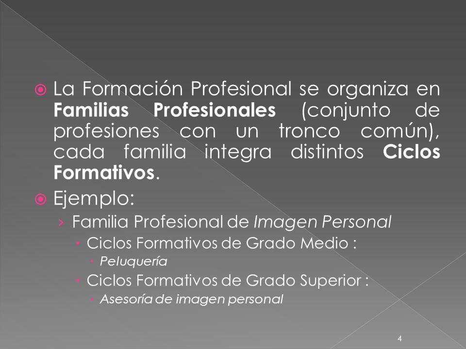 La Formación Profesional se organiza en Familias Profesionales (conjunto de profesiones con un tronco común), cada familia integra distintos Ciclos Formativos.