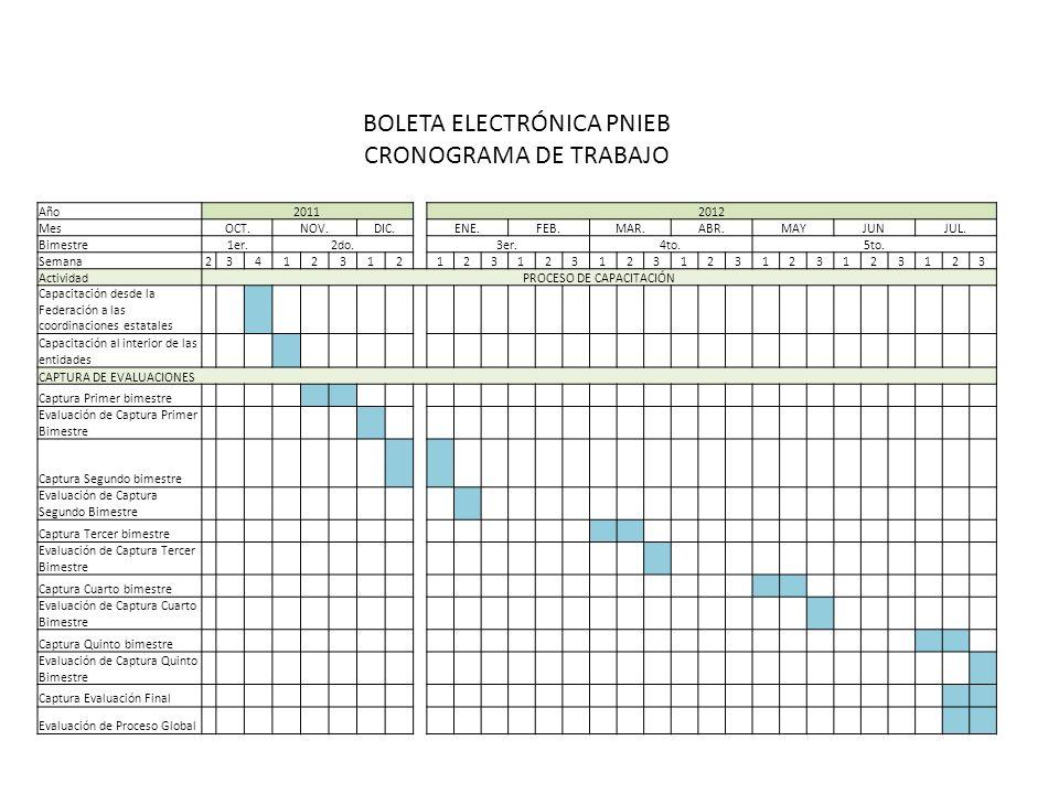BOLETA ELECTRÓNICA PNIEB CRONOGRAMA DE TRABAJO