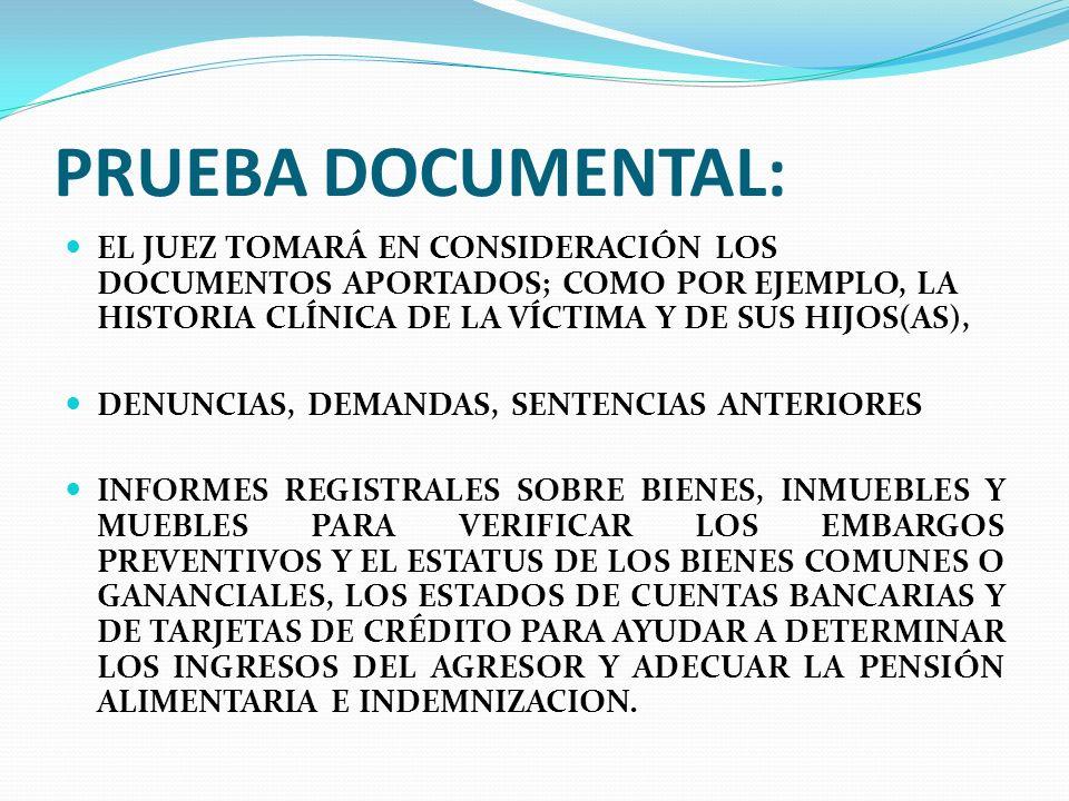 PRUEBA DOCUMENTAL: EL JUEZ TOMARÁ EN CONSIDERACIÓN LOS DOCUMENTOS APORTADOS; COMO POR EJEMPLO, LA HISTORIA CLÍNICA DE LA VÍCTIMA Y DE SUS HIJOS(AS),