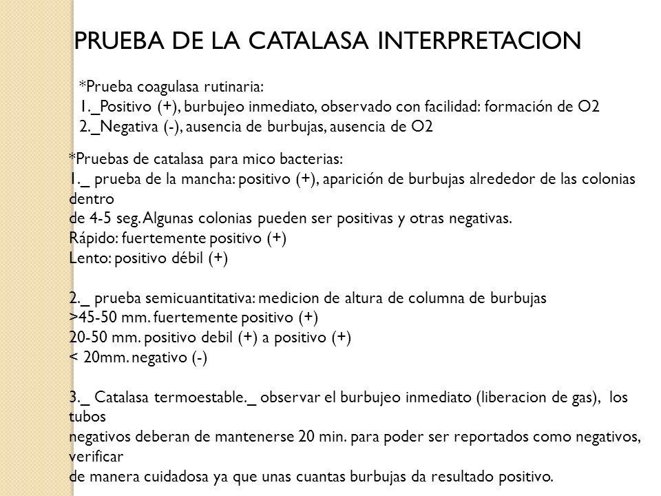 PRUEBA DE LA CATALASA INTERPRETACION