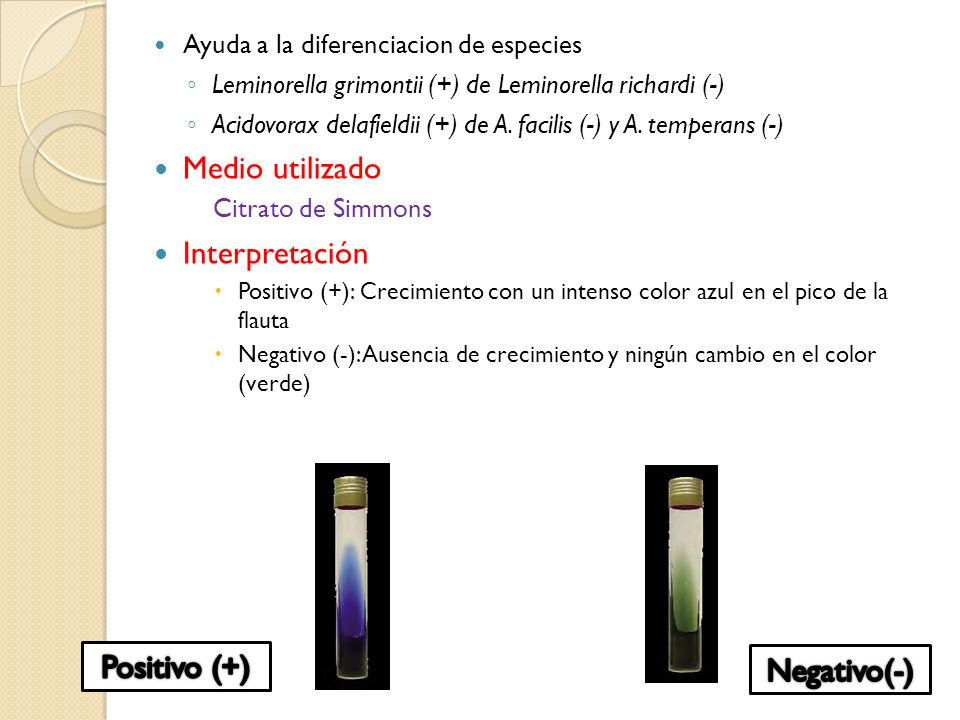 Medio utilizado Interpretación Positivo (+) Negativo(-)