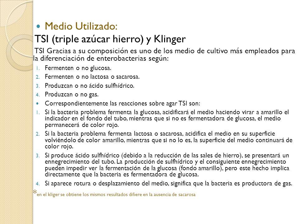 TSI (triple azúcar hierro) y Klinger