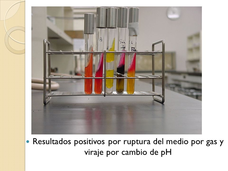 Resultados positivos por ruptura del medio por gas y viraje por cambio de pH