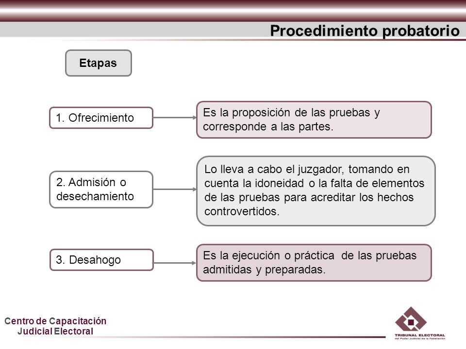 Procedimiento probatorio