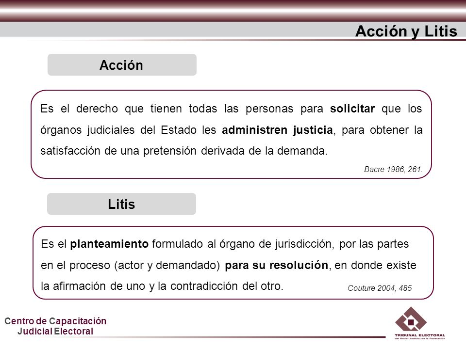 Acción y Litis Acción Litis