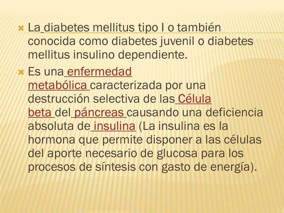 La diabetes mellitus tipo I o también conocida como diabetes juvenil o diabetes mellitus insulino dependiente.