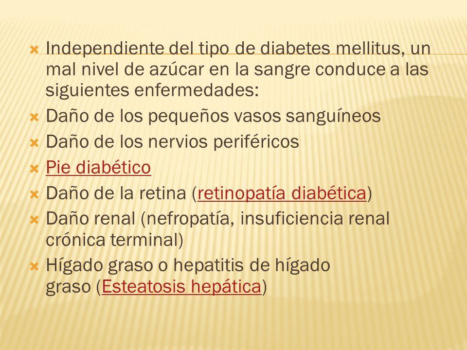 Independiente del tipo de diabetes mellitus, un mal nivel de azúcar en la sangre conduce a las siguientes enfermedades: