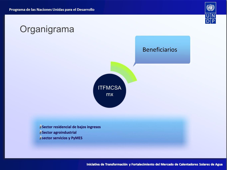 Organigrama Beneficiarios ITFMCSAmx