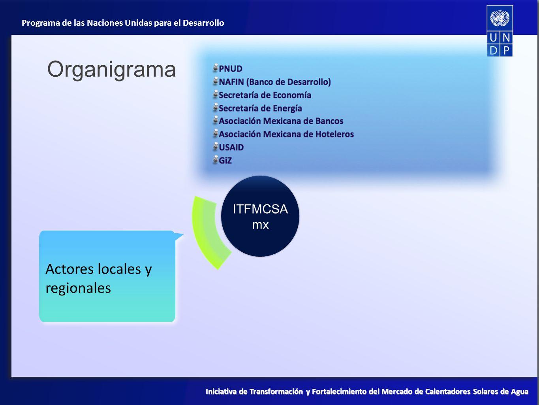 Organigrama ITFMCSAmx Actores locales y regionales