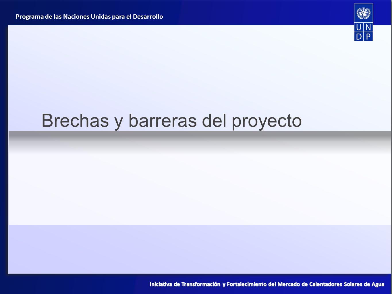 Brechas y barreras del proyecto
